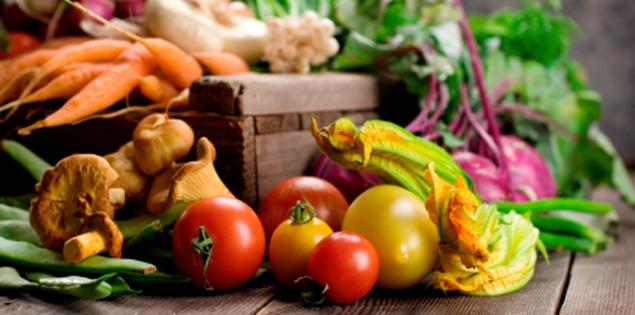 Vegetarian/ vegan meal plans